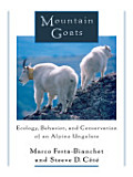 Mountain Goats, Ecology, Behavior and Conservation of an Alpine Ungulate